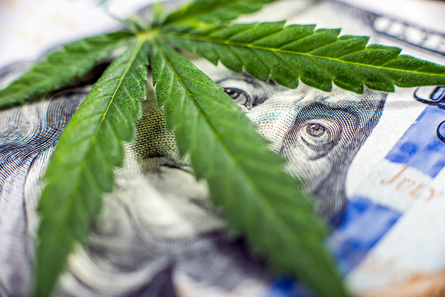 Study suggests legal marijuana industry puts profit ahead of safety for the unborn