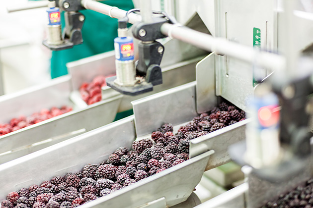 Frozen fruit and vegetable market on the rise