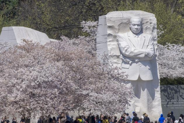 Weaving MLK's teachings throughout a class curriculum