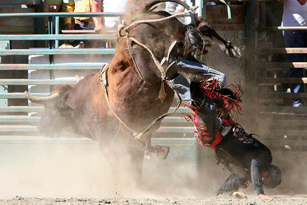 Bull rider's suicide highlights the danger of concussions