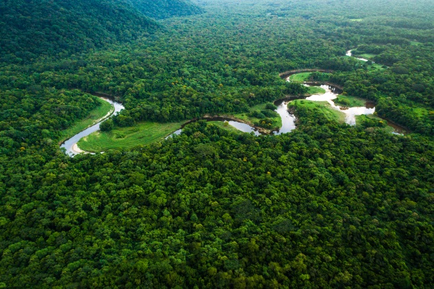 Deforestation in Brazil comes with health consequences