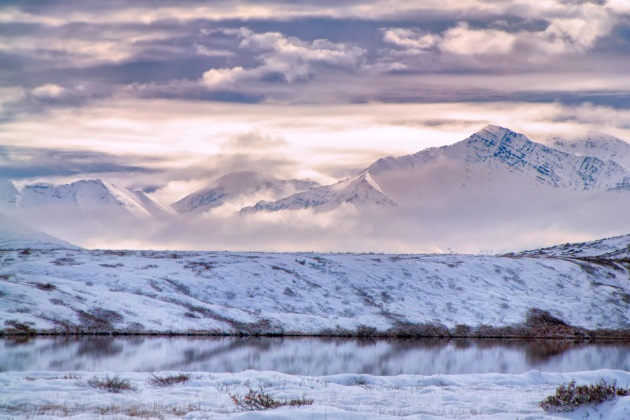 Controversial seismic survey in Alaska's ANWR halted