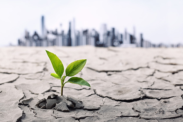 A climate of change: What should your organization do?