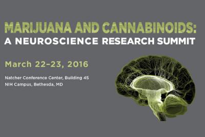 Historic meeting highlights positive, negative effects of marijuana