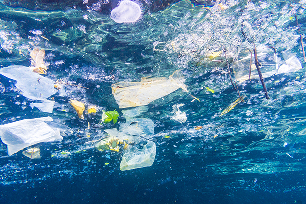 New discovery could solve the world's ocean plastics problem