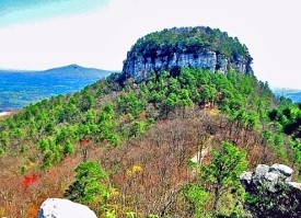 A journey on the Blue Ridge Parkway: Part 2