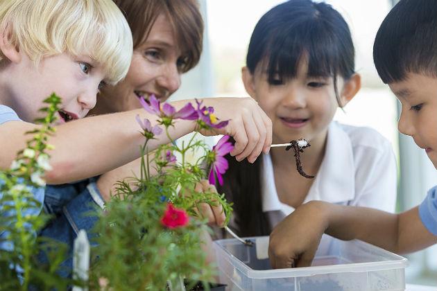 K-12 schools shifting focus toward environmental studies