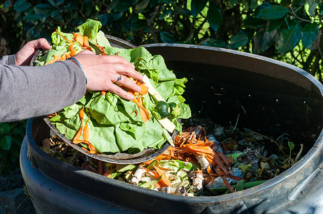 The surprisingly easy (and cheap) ways to eliminate food waste