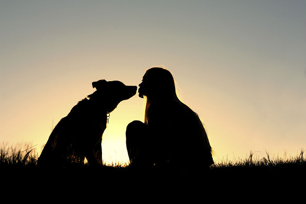 Marketing to the dog-lover lifestyle can mean big business