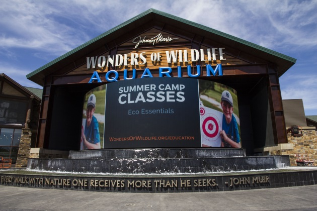 Springfield, Missouri's Wonders of Wildlife Museum and Aquarium is a tribute to the outdoors