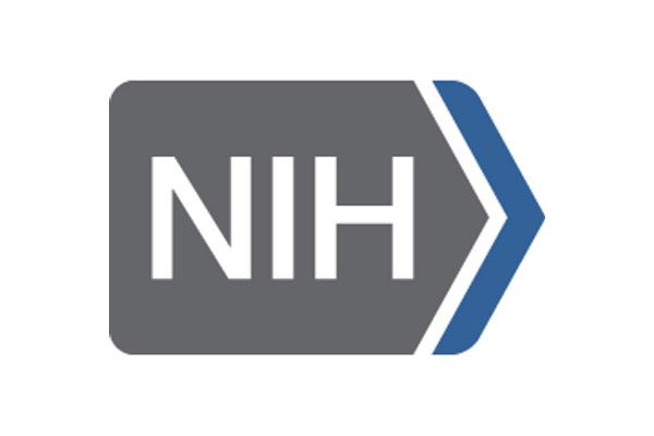 Nih Travel Agency