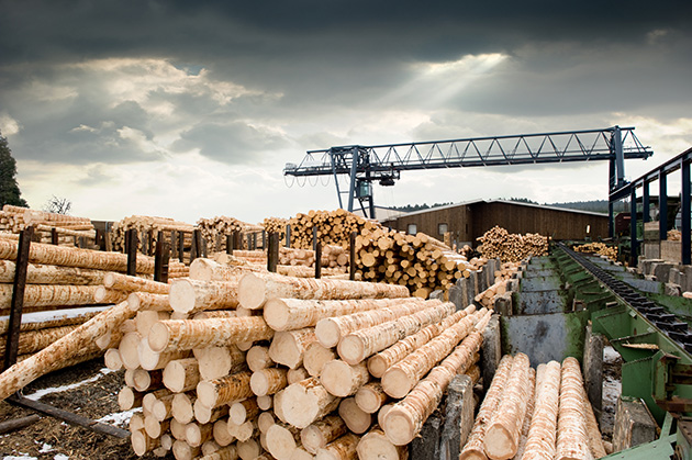 Softwood lumber dispute cuts both ways