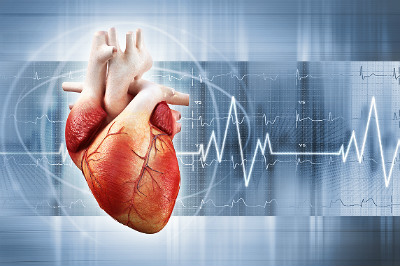 Warding off heart disease with dietary supplements