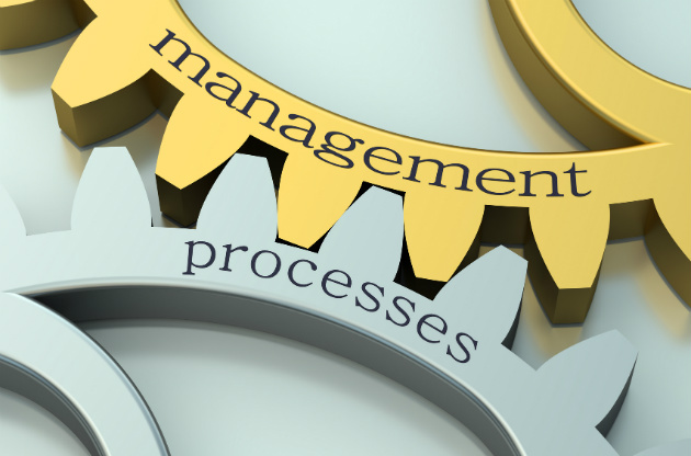 Improving project outcomes through a customized process