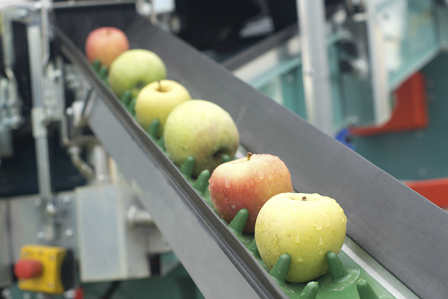 Explosive growth expected for produce processing market