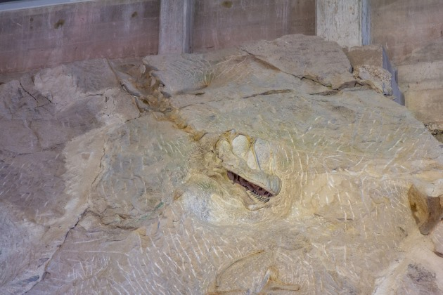 America's top fossil sites and dinosaur attractions