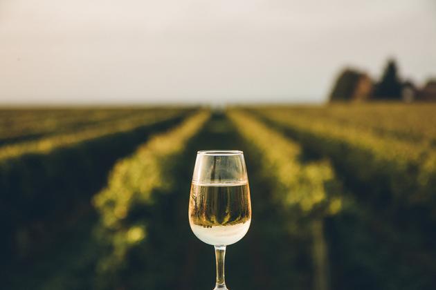 6 unsung American wine regions