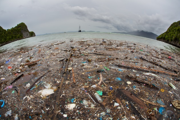 Dutch nonprofit installs potential solution to Great Pacific Garbage Patch