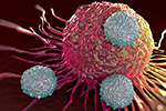 Researchers: Thermotherapy could fight organ rejection, cancer