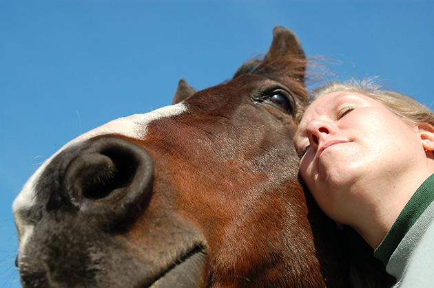 How equine therapy can help in schools