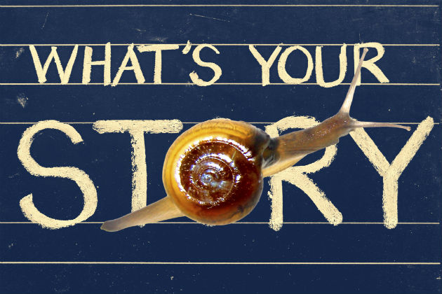 The art of using a story to sell