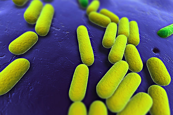 Who are the defenders against antimicrobial resistance?