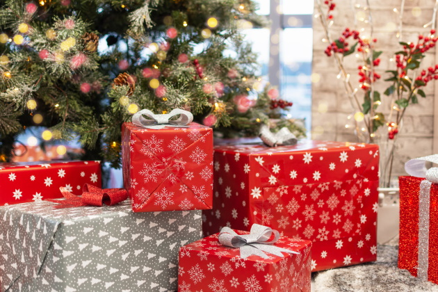 10 holiday gift ideas for busy executives